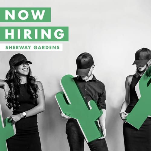 Sherway Gardens Now Hiring | Cactus Club Cafe Toronto